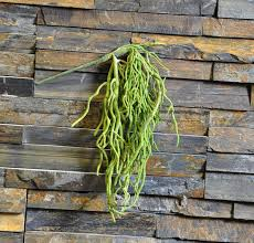 home garden wall mounted plants artificial butterfly orchid root