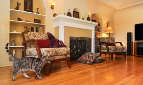 Cost To Refinish Wood Floors Per Square Foot Should I Refinish My Hardwood Floors Reviewed Com Vacuums