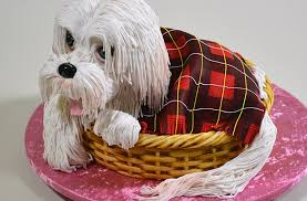 dog cake 3d puppy dog in a basket cake yeners way