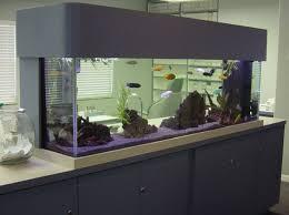 Fish Tank Reception Desk 254 Best Aquariums With Style Images On Pinterest Custom
