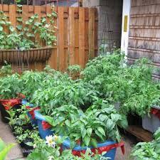 Inside Vegetable Garden by 25 Best Ideas About Small Vegetable Gardens On Pinterest Inside