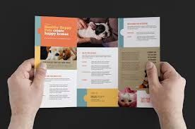 brochure templates adobe illustrator brochure adobe illustrator tri fold brochure template