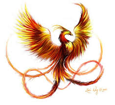 tribal phoenix tattoo design in fire colors