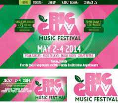 brightfire brands big guava music festival website design