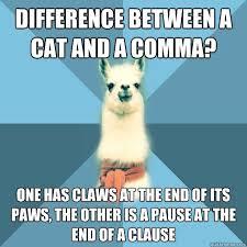 Grammar Meme - meme monday grammar rules bhp english headquarters