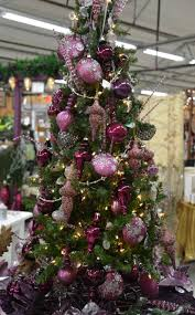the christmas tree echter u0027s garden talk