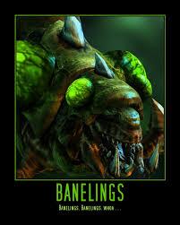 Starcraft 2 Meme - starcraft ii baneling by onikage108 on deviantart