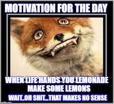 Motivational Memes - motivation imgflip