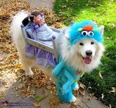 Halloween Costume Ideas Dogs 100 Creative Diy Costume Ideas Dogs