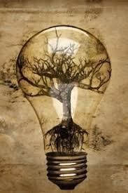 19 best world in the light bulb inspiration images on