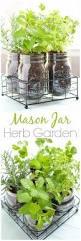 indoor herb garden ideas diy herb garden indoor herbs and herbs