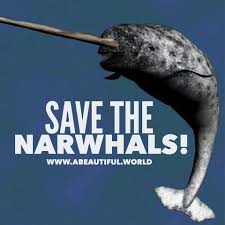 a beautiful world save the narwhals