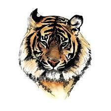 tiger temporary
