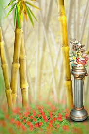 wedding backdrop chagne guys for your lovely new wedding studio backgrounds for photo