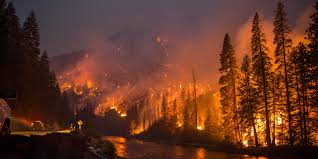 Wildfire Bc Whistler our future with forest fires a climate action symposium aware