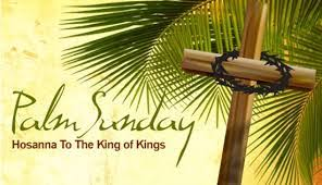 palm branches for palm sunday monday s blessing 12 13 they took palm branches and went out