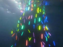 underwater tree lighting in east cobb generated