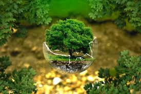 bureau d etude environnement assurance bureau d études en environnement