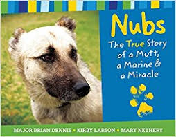 The Miracle True Story Nubs The True Story Of A Mutt A Marine A Miracle Brian Dennis
