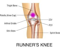Anatomy Of Knee Injuries Causes Of Knee Injury And Pain Ezmend