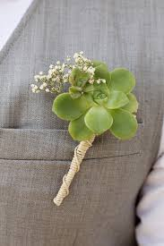 succulent boutonniere a succulent wedding needles leaves