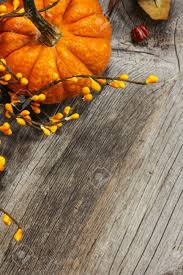 fall pumpkin background thanksgiving and harvest theme stock photo