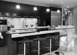 Black Kitchen Cabinet Ideas by Kitchen Breathtaking Cool Wonderful Purple Kitchen Design With