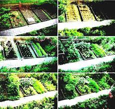 vegetable garden layout plans part 29 vegetable garden home