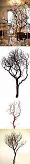 centerpieces and table d cor 159928 48 32 manzanita branches