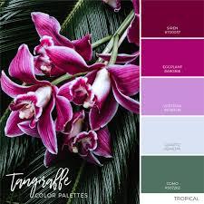 matching color schemes tropical color inspiration color combination color palettes