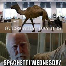 Hump Day Camel Meme - re the walking dead theories questio page 16 beauty