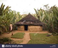 Mexican Thatch Roofing by Thatch Mud Stock Photos U0026 Thatch Mud Stock Images Alamy