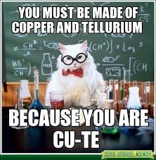 Chemistry Jokes Meme - chemistry cat google search funny pinterest chemistry cat