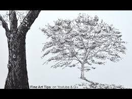 tree videos forest videos arborist videos trees group