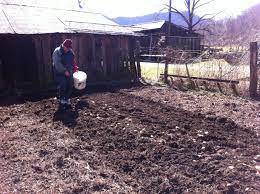 irma u0027s potato technique and garden wisdom grow appalachia