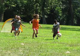 octoraro native plant nursery smith memorial playground u0026 playhouse