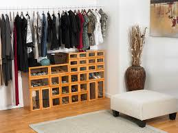 Shelves For Shoes by Closet Storage For Shoes Home Design Ideas