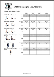 exercise software view articles