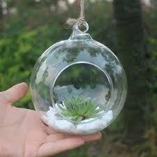 clear round hanging glass vase bottle terrarium container garden