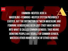 what is the neuter gender youtube