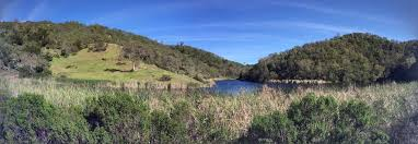 Henry Coe State Park Map by Best Backpacking Trails In Henry W Coe State Park Alltrails Com