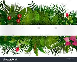 Foliage Flower - tropical foliage floral design background vector stock vector