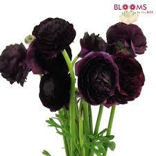 wholesale flowers near me wholesale flowers bulk wedding flowers online bloomsbythebox