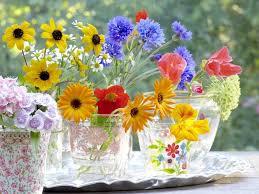 fresh cut flowers fresh cut flower delivery tips for sending freshly cut flowers