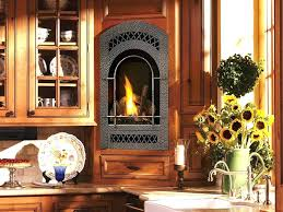 Fireplace Inserts Seattle by Smallest Gas Stove Narrow Gas Stove Top Smallest Jotul Gas Stove