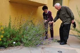 Fragrant Garden Plants Fragrant Garden Friends Of The Chula Vista Library