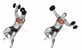 Flat Bench Db Fly Incline Dumbbell Fly U0027s Bodybuilding Pinterest Chest Workouts