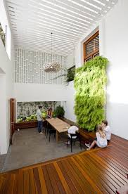 112 best office plants images on pinterest plants gardening and