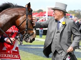 rekindling wins melbourne cup betting dividends results