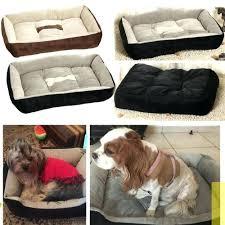 Doggie Beds Dog Beds Size U2013 Thewhitestreak Com